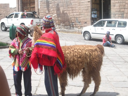 Young boys offering photos with their Llama for a fee